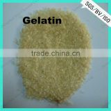 Hot sale empty hard gelatin capsules
