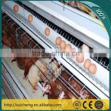 Guangzhou Factory Free Sample Triple Galvanized Poultry Chicken Cages for sale                                                                         Quality Choice
