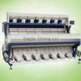 384 channels Optoelectronic Raisin Color Sorting machine