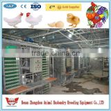 farm equipment for sale/chicken poultry farm equipment/chicken egg poultry farm equipment