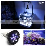 First-class quality led par38 aquarium light coral reef top Material