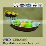 Colorful oval ceramic bakeware