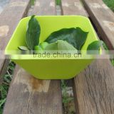 Disposable mixing square bamboo fibre powder bowls