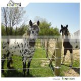 High Quality Fentech Electric Tape Horse Fence