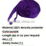 hot sale manufactory polyester webbing sling/round sling/lifting strap