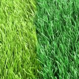 Football synthetic grass with high quality