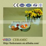 2014 High Quality ceramic mixing bowl/ceramic bowl
