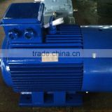 Y2 Three Phase Cast Iron Housing Air compressor Electric Motor