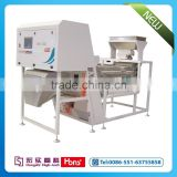 Full color camera CCD belt color sorter machine for cashew nut with shape sorting