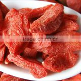 Chinese Dried Wolfberry Ningxia goji plant berry berries for sale in bulk