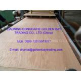China Plywood/ film faced plywood/ commercial plywood exporter