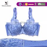 2015 New Arrival Graceful Mature Women 3D Mould Cup Seamless Sexy Indian Girl Without Bra In Transparent Dress