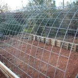 Welded Wire Cattle Panels