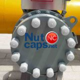 Construction Nut Corrosion Cap]