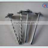 Umbrella Head Roofing Nail With plastic Washer/Roofing Nail With Twisted/Plain Shank