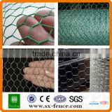 Poultry and small animal wire netting roll/PVC coated galvanized/bird cage chicken wire(ISO9001:2008 professional manufacturer)
