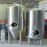 1200L fermentation machine brite tank brewing 12HL brewery tank