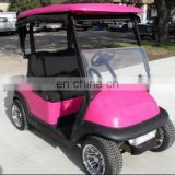 fashion color mini golf cart two seat cart China factory best price