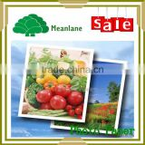 Single Side Glossy Inkjet Photo Paper