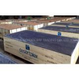 China concrete formwork plywood supplier/manufacturer