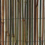 Natural bamboo fence/bamboo sticks/bamboo poles/ high quality best price & wholesale