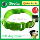 Custom glowing led dog collar luminous dog collars USB rechargeable flashing collar