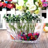 creative transparent large glass vase/ flower in different container/ home decorations