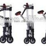 Wholesale New Styple Electric Folding Tall Bike With Cheapest Price