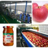 fruit jam and paste processing line