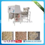 China Hefei Hongshi Belt Sorter Machine