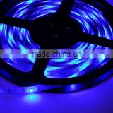 SMD LED flexible strips LED strip light LED tape light