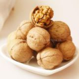 2014 New crops walnut in shell