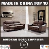 Office sofa with pure leather(LZ-626)