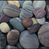 Mixed Color River Pebble Stone 15 - 25mm Natural For Garden Road