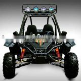 fashional 250cc adult dune buggy