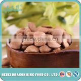 Raw apricot seeds, raw bitter apricot kernels, chinese bitter apricot kernels same sa almonds