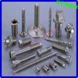 China Guangdong stainless steel screw nut rivet manufacturer