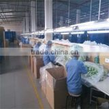 Guangzhou Vpower Trading Co., Ltd.
