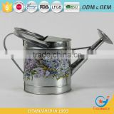 galvanized stickers water garden for flowers best watering can