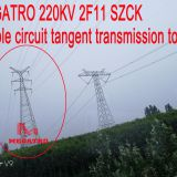 MEGATRO 220KV 2F11 SZCK double circuit tangent transmission tower