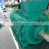 50HP Three Phase IE3 Electric Motor with CE