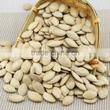 Dried organic new crop shine skin or gourd seeds pumpkin seeds kernels China Origin Inner Mongolia professional factory