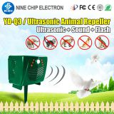 Outdoor Bird Repeller Ultrasonic Wolf Killer Widely use Owl Reject Best Wolf Killer