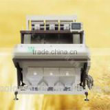 New Condition Peeled Garlic sorter machine