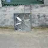 Hot sales Negative Pressure Fan/Drop hammer exhaust fan for Industrial/Cattle/Poultry/Green house/Livestock farm