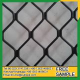 Singapore Beautiful Grid Wire Mesh aluminum amplimesh