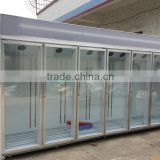 Convenience Store Commercial Glass Door Freezer For Fruit Using 2-8 Degree Hight Quality Compressor