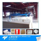 Full automatic mgo board making machinery with best quality