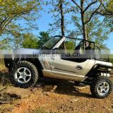 powerfull 800cc dune buggy for sale with EFI engine