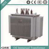 Power Transformer/Oil Immersed Power Distribution Transformer/800kVA Transformer